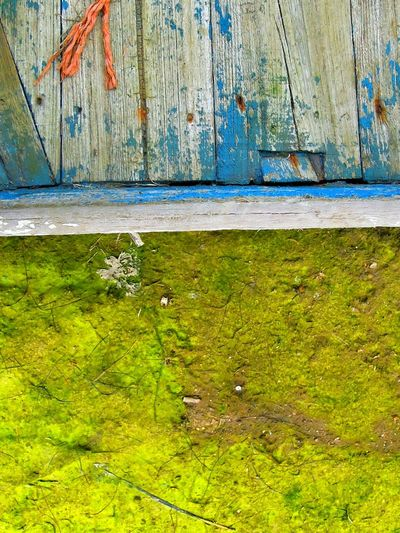Abstract Colorful Colourful Rotting Wood Peeling Paint Deterioration Shipwreck Portuguese Adandoned Abstract Art Moss On A Boat Fishing Boats Textures And Surfaces