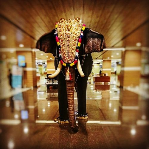 Elephant Travel Destinations Kerala Kochi Airport Statue Culture Welcome Decoration Background Blur Airport Travel Photography Yellow Lights