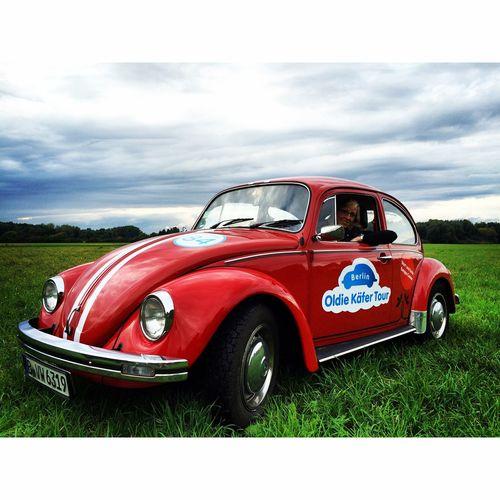 VW Beetle Käfer Berlin Brandenburg Käfer Tour Deutschland Love ♥ Red Rot VW Käfer