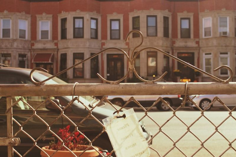 """""""Front Yard, Prospect Lefferts Gardens, Brooklyn"""" Front Yard Brooklyn NYC Houses And Homes"""