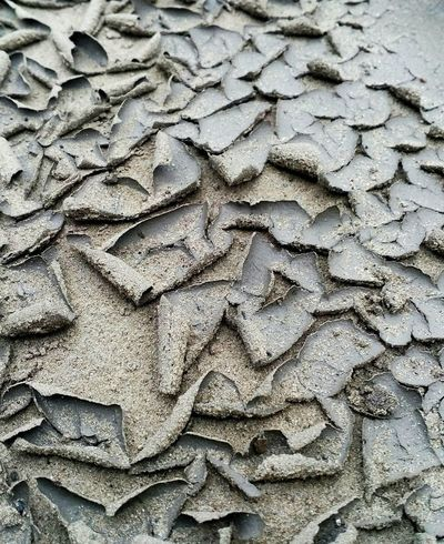 Earth Ground Mud Dry Dryness Pieces Color Soil