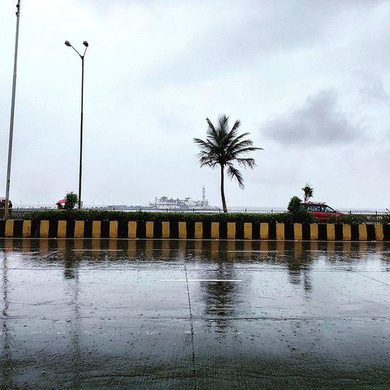 The sparkling wet road, a Coconut tree with the majestic Haji Ali mosque in the background makes for a Picturesque Monsoon scene. Hajiali Hajialidargah Rains Rainyseason Monsoon Monsoonseason Mumbai Bombay Mumbaimerijaan Travelphotography