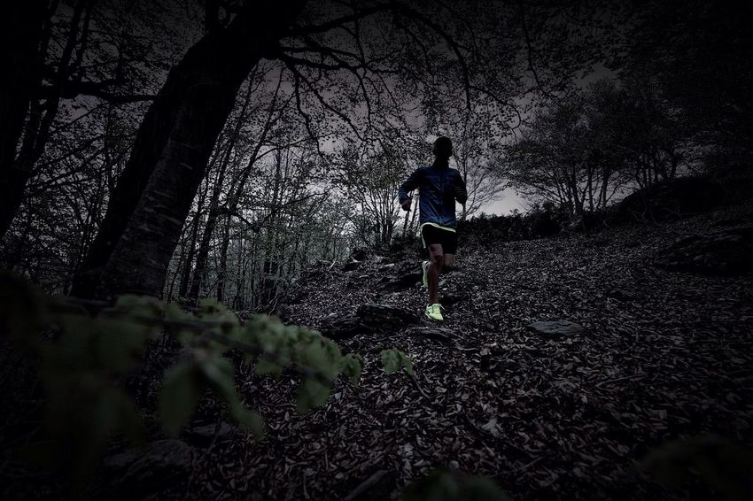 Trail Running Sports Photography Mountains