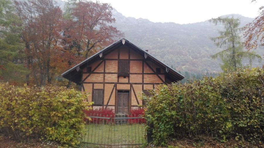 Autumn🍁🍁🍁 Houses And Windows House No Filters Or Effects Wood Montains    Lake Cei Italy Details Detail Nature Nature_collection Hello World Montain  Rainy Days Rain Plants 🌱 Old House Trentino Alto Adige