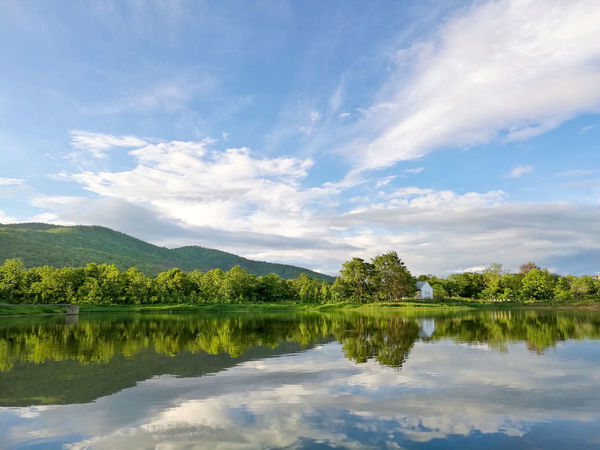 Reflection of natural tree and sky in a lake. Beauty In Nature Blue Calm Cloud Cloud - Sky Day Idyllic Lake Landscape Mountain Mountain Range Nature No People Non Urban Scene Non-urban Scene Outdoors Reflection Remote Scenics Sky Standing Water Tranquil Scene Tranquility Tree Water
