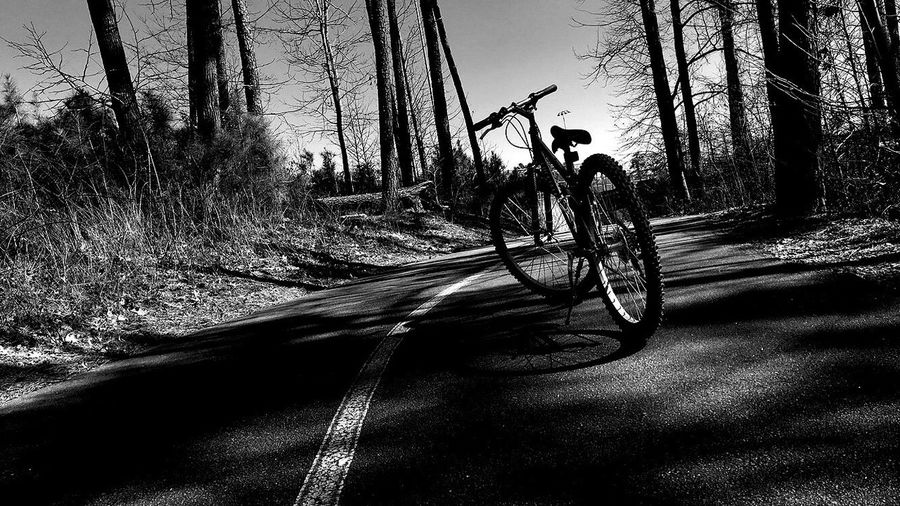 Bike Outdoor Photography Road Dramatic Blackandwhite Photography Right Lane Must Turn Right Pineapple🍍 Black And White Reality Let's Go Celebrate Your Ride Q The Photojournalist - 2016 EyeEm Awards The Portraitist - 2016 EyeEm Awards