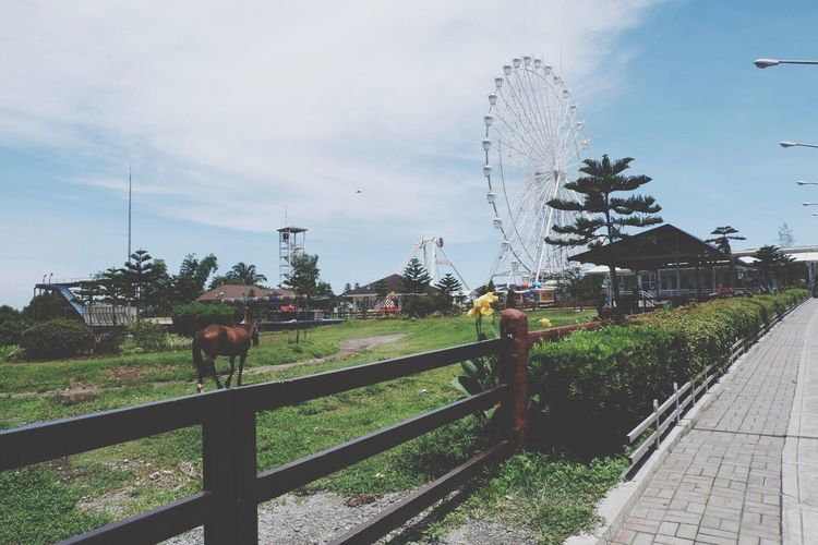 Ferris Wheel Horse Skyranch Skyranchtagaytay View Rides Outdoors Amusement Park