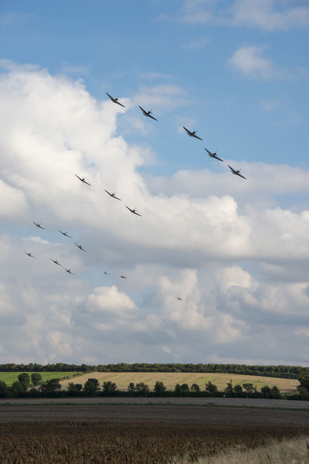 Large group of Spitfires flying over the British Countryside Air Force British Cloudy Duxford Imperial War Museum Formation Summertime Sunny Bands Battle Of Britain Cloud - Sky Countryside Countryside Life English Fields Fighter Flying Group Large Group Of People Many Mid-air Sky Summer Ww2