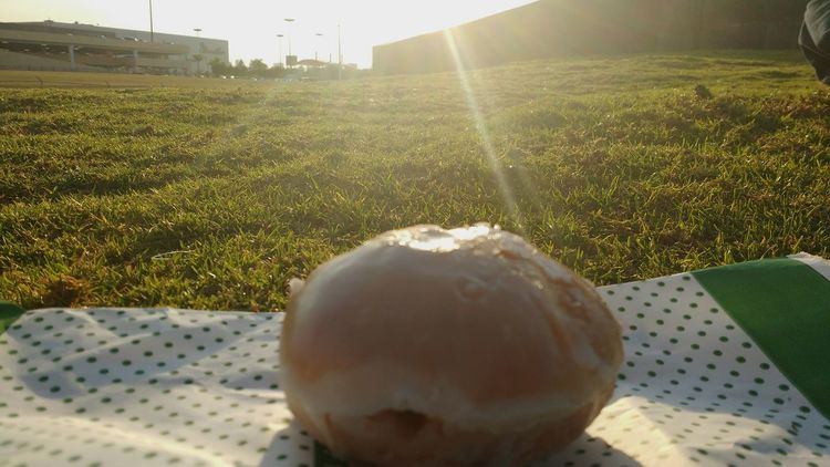 Donuts Sun Glitch Food Miau *-*