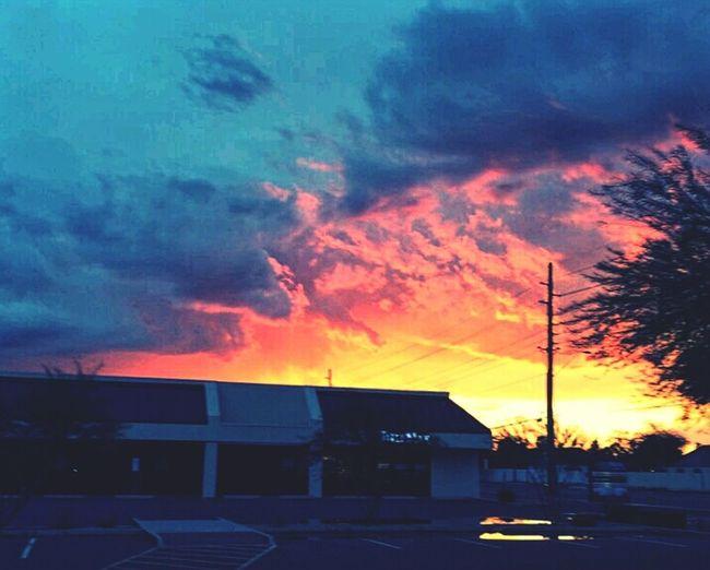 Arizona Life!