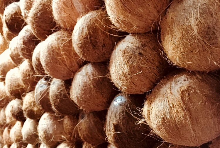 HeadCount Coconut Full Frame Backgrounds Large Group Of Objects No People Abundance Stack Day Arrangement Repetition Wood - Material Textured  Pattern Log Stories From The City
