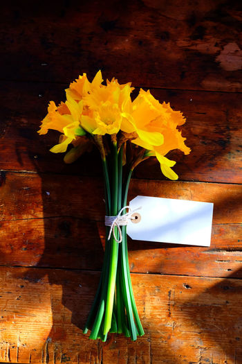 Romantic Beauty In Nature Blank Label Blank Labels Blank Table Blank Text Bouquet Close-up Daffodil Daffodils Flowers Daffodils In The Sun Daffodilsflowers Day Flower Flower Head Fragility Freshness Green Color Indoors  Leaf Nature No People Room For Text Text Space Yellow