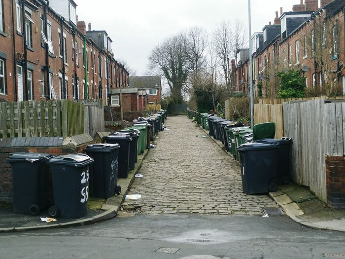 Bins Bin Lined Up Garbage Garbage Bin Waiting Waiting In Line Street Streetphotography House Houses Houses And Windows Sea And Sky Trees Tree Trash Trashbin Trashcan Bags LINE Lines In Order Lined Up In A Row Lined Out Road