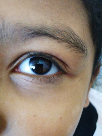 Human Eye Human Body Part One Person Looking At Camera Eye Close-up Portrait