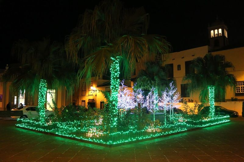 Navidad en Garachico Illuminated Night Decoration Christmas Lights Tree Christmas Christmas Decoration Holiday - Event Light - Natural Phenomenon Light Holiday Built Structure No People Building Exterior Lighting Equipment christmas tree Celebration Architecture Glowing Celebration Event