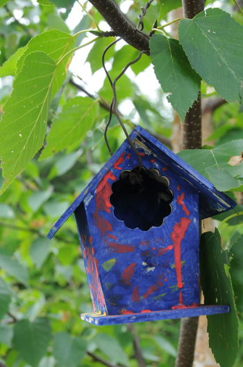 free rent Homemade Colorful Painted Tree Leaf Close-up Birdhouse