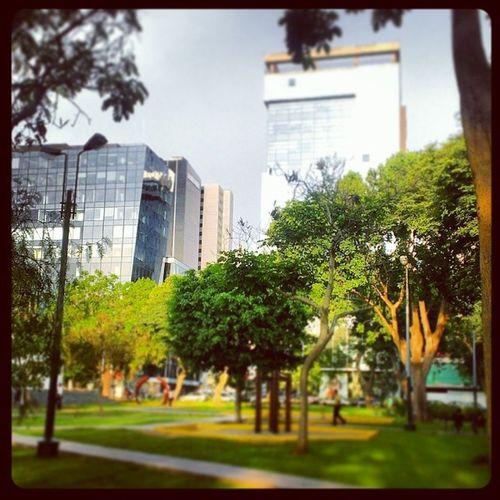 Acá... Saliendo de la oficina un viernes. Lo mostró es que tengo el parque al costdo. Job Daily RSE PR sani Lima Perú