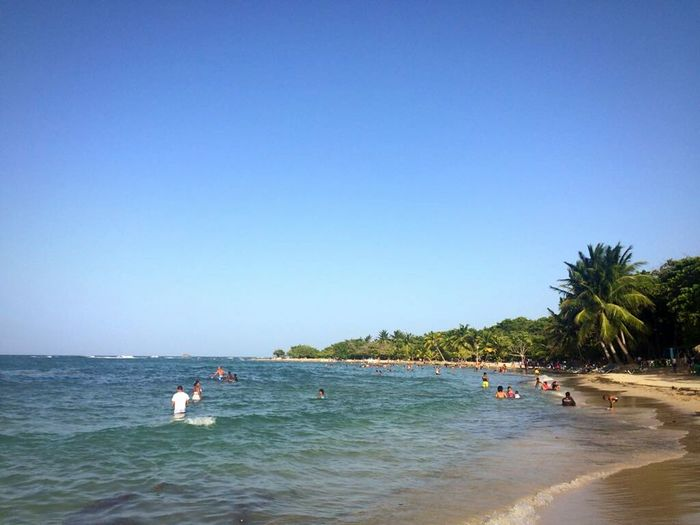 Sunny Clear Sky Sea Beach Water Blue Vacations Tree Sky People Leisure Activity Nautical Vessel Adult Day Large Group Of People Outdoors Nature Travel Destinations Full Length Competition