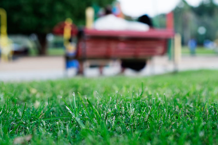 Day Grass Green Color Growth Leisure Outdoors Park People Surface Level Focus Object