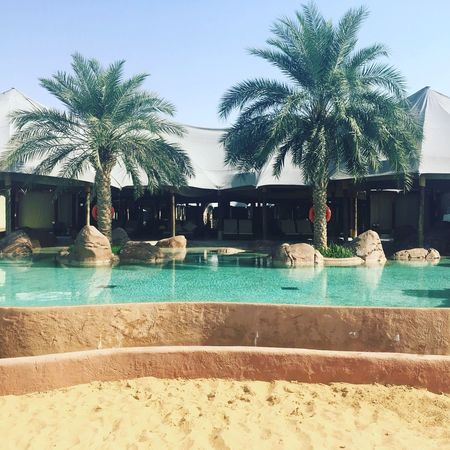 Infinity pool of desert resort Al Ain Eyeem Market Desert Desert Resort Infinity Pool Tree Plant Water Swimming Pool Pool Nature Sky No People