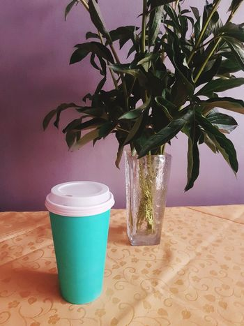 Coffee Coffee Cup Pop Art Colorful Coffee Time Take A Break Take Away Take Away Coffee Take Away Cups Green Tree Leaf Potted Plant Plant Green Color Close-up Vase Tulip Peony  Bunch Of Flowers Centerpiece Lid