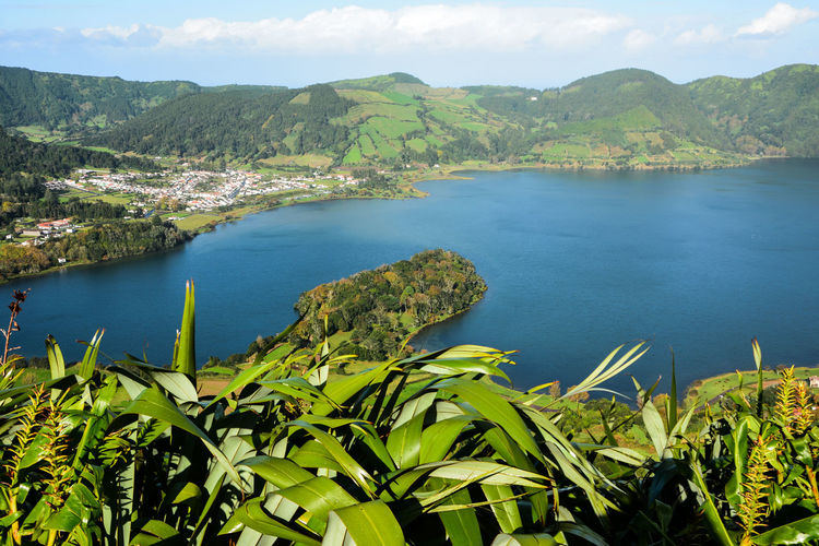 Azores Açores Portogallo Furnas(Azoren) Furnas Ponta Delgada Açores - São Miguel Portugal Park Lake View Green Square Citysquare Cat Black Cat X Water Mountain Lake Tree Sky Landscape Cloud - Sky