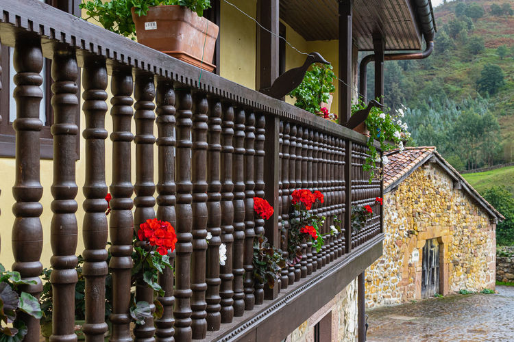 Red flowers on railing of building