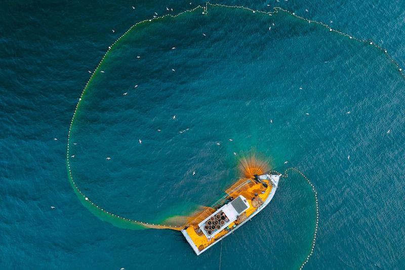 Aerial view of people fishing in sea