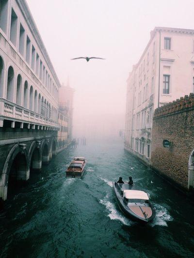 My Year My View Venezia Venice Celestalisblue Celestalis Italy