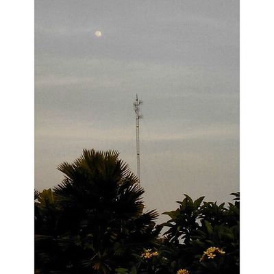 early Moon at Kampunglumbung Kotabatu INDONESIA Lenovotography Photooftheday Pocketphotography Photostory Lzybstrd