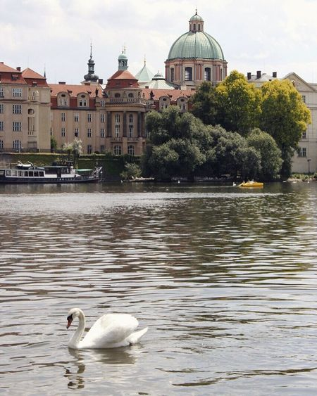 Hello World Taking Photos Relaxing Enjoying Life Hi! Happy Summer Journey 2016 Prague Czech Republic