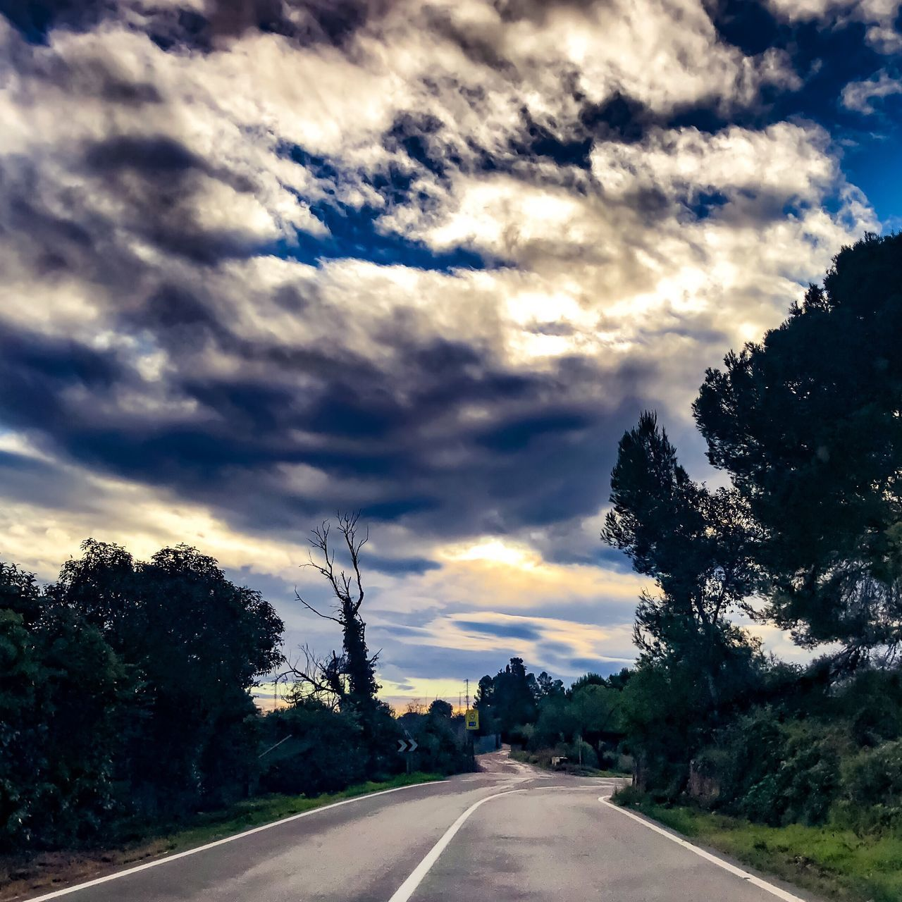 road, cloud - sky, tree, sky, transportation, direction, plant, the way forward, nature, no people, sign, beauty in nature, tranquil scene, tranquility, symbol, diminishing perspective, road marking, marking, landscape, scenics - nature, outdoors, dividing line