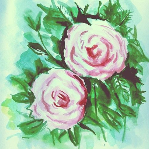 Hôm nay vẽ hoa hồng ?? Rosé Watercolor Painting Todayidraw