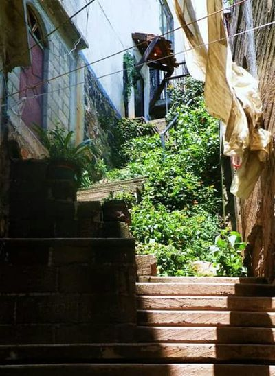 Cityscape Mexico Awesome_shots Awesome_view Stairs_collection Chalma The Street Photographer - 2017 EyeEm Awards The Great Outdoors - 2017 EyeEm Awards The Architect - 2017 EyeEm Awards The Graphic City Built Structure Architecture Building Exterior House Tree Growth Plant Low Angle View Residential Structure Window Wall - Building Feature Building No People Day Residential Building Outdoors Potted Plant Sunlight Railing Wall