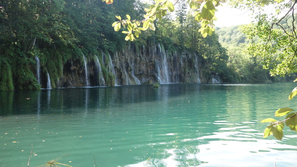 Amazing_captures Beautiful Beautiful Nature Beauty In Nature Croatia Croatia ♡ Exploring Forest Forestwalk Green Nature Nature Photography Nature_collection Plitvice Plitvice National Park Taking Photos Taking Pictures Travel Destinations Unesco UNESCO World Heritage Site Vacation Water Water Reflections Waterfall Waterfront