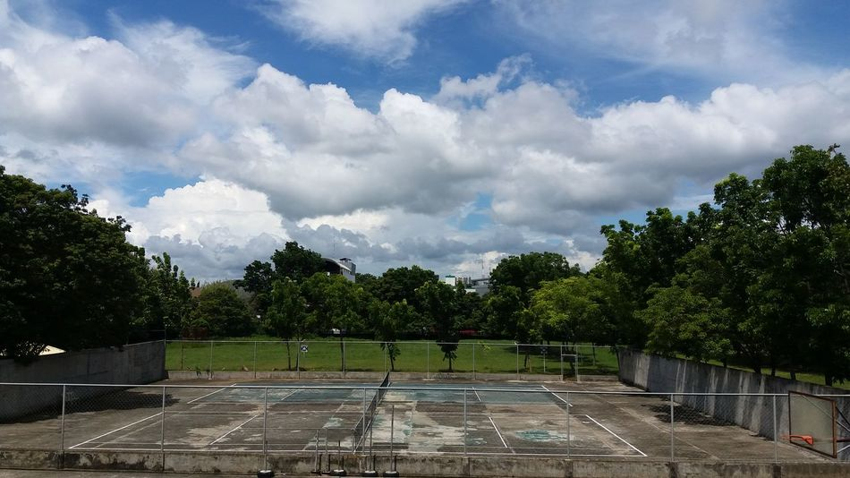 Cloud - Sky Tree Soccer Sport Sky Soccer Field Playing Field No People Competition Outdoors Stadium Grass Match - Sport Day Tree EyeEm Vision