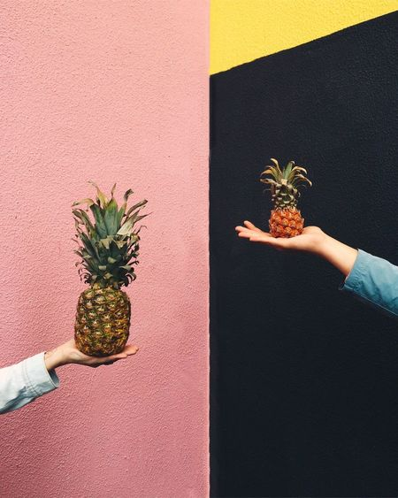 Holding Indoors  Close-up Person Human Finger Growth Houseplant In Front Of Spiked Green Color Pinapple Pink Color Pink Wall Hands Colors and patterns Fresh on Market 2016 Mix Yourself A Good Time