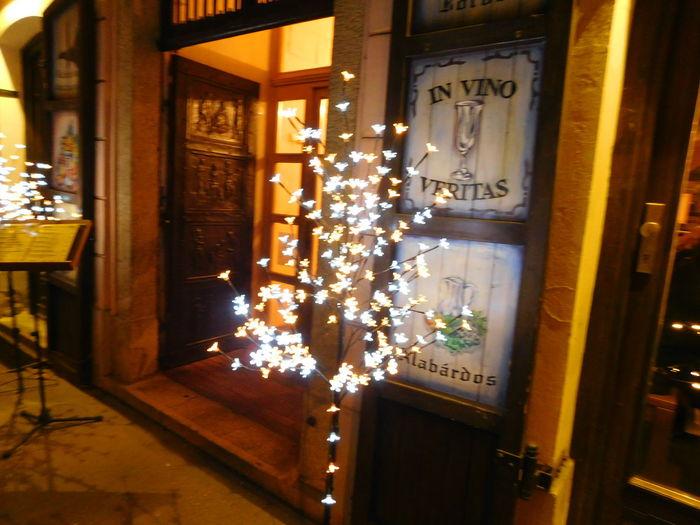 Evening Light In Vino Veritas Szeged Walking In The Street Wintertime