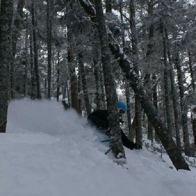 Cannonmt a couple years ago. Powder Treeskiing