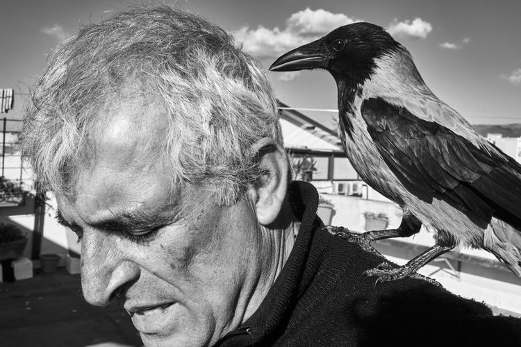 My father and his crow Blackandwhite Black And White Black & White Headshot Real People Vertebrate One Person Animal Wildlife Men Portrait One Animal Focus On Foreground Close-up Lifestyles Leisure Activity Bird Males  Day Senior Adult Adult Outdoors Mature Men Crow Father 2018 In One Photograph Moms & Dads Streetwise Photography The Art Of Street Photography