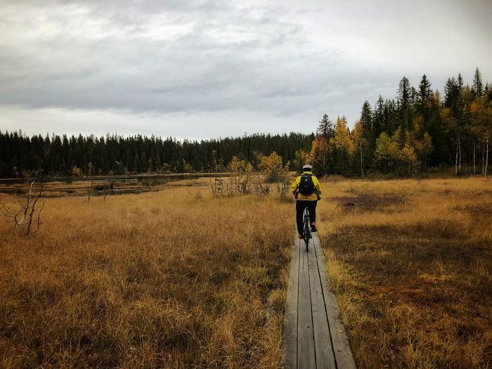 Silence Colors Silence Training Bicycling Helmet Man One Person Woman Tranquility Autumn Hiking Norway Trip Cycling Bicycle Activity Nature Tourisme
