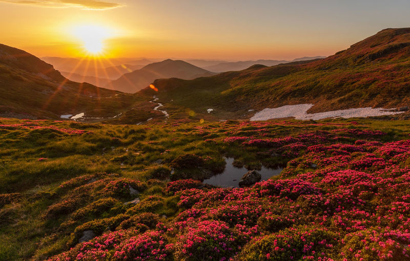 Scenic view of mountains against sky during sunset in rodnei mountains