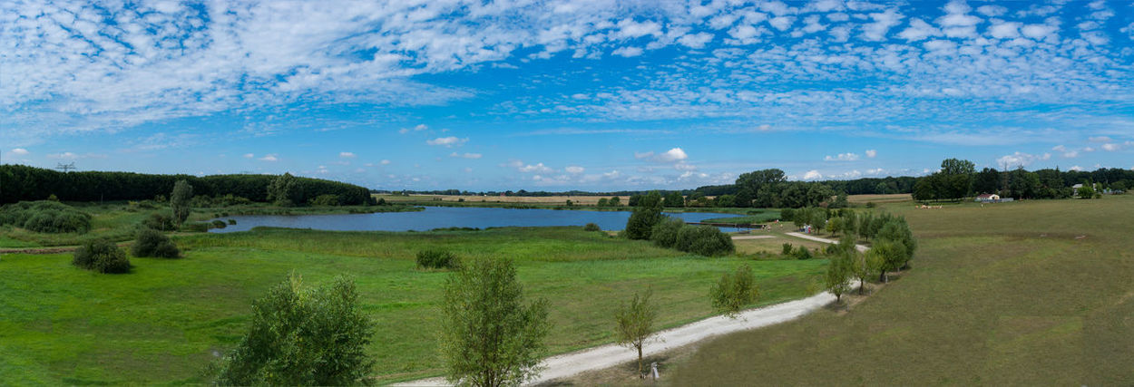 Panoramic view of the swimming, fishing and nature area Eixen lake. Shot from the lookout tower Plant Sky Water Cloud - Sky Landscape Tranquil Scene Environment Nature Tranquility Scenics - Nature Grass Beauty In Nature Tree Green Color Day No People Land Lake Field Outdoors