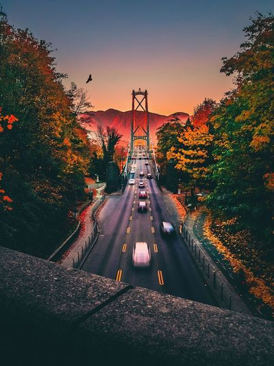 Blurred Motion Of Cars On Suspension Bridge During Sunset