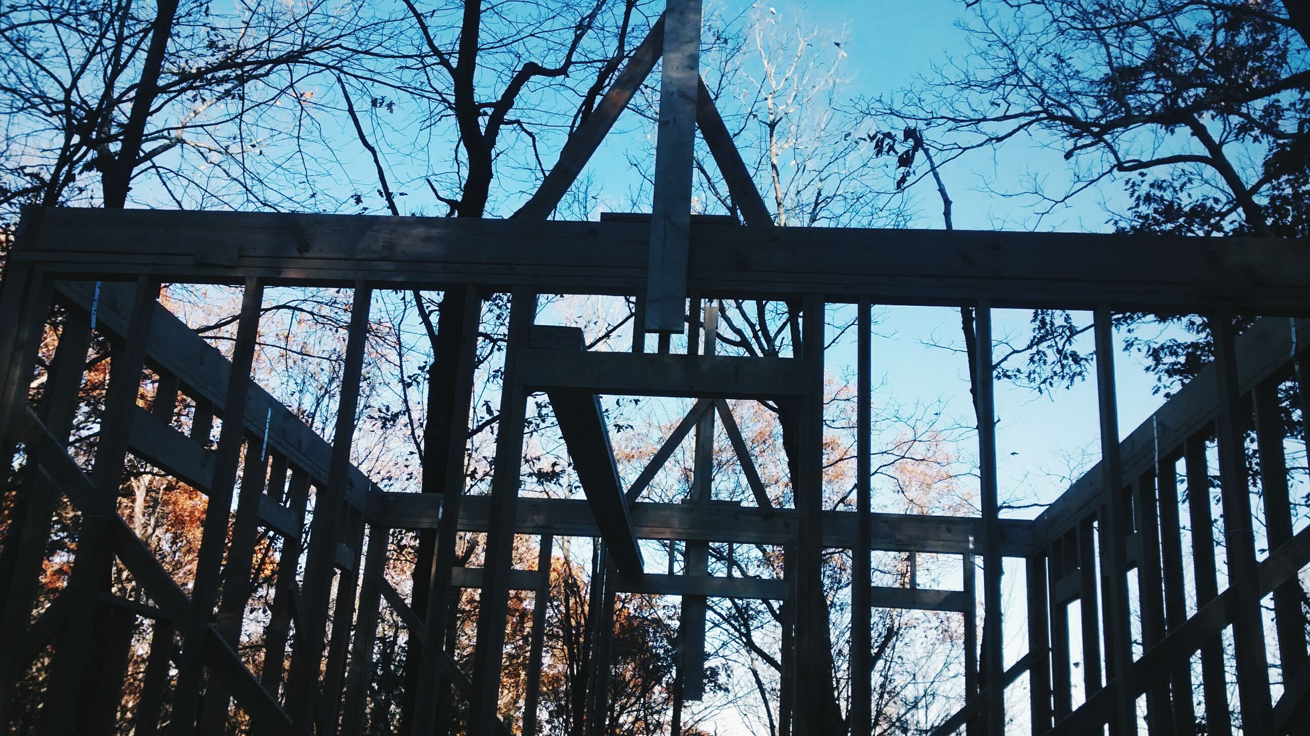 low angle view, built structure, architecture, tree, bare tree, connection, bridge - man made structure, sky, silhouette, branch, metal, engineering, dusk, no people, bridge, outdoors, building exterior, day, nature, blue