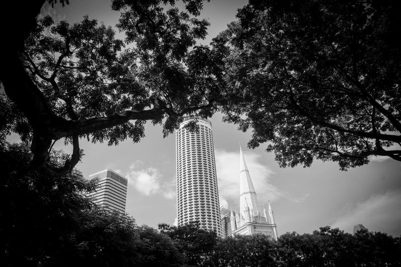 Low angle view of trees and buildings against sky