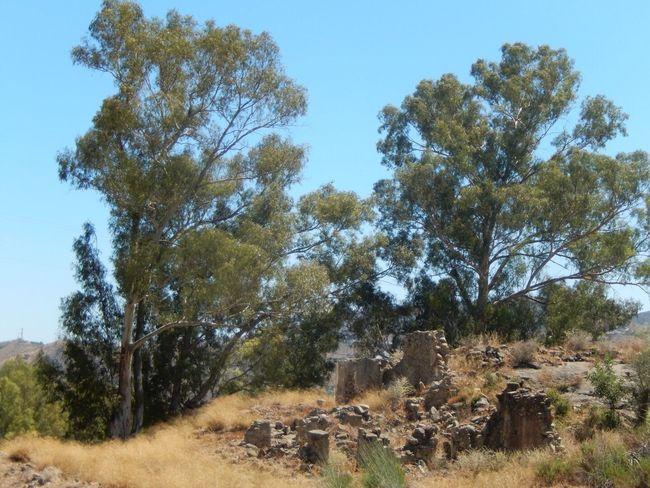 Ruined Building Spain♥ Campo Andalucía Ruins Karen Grace