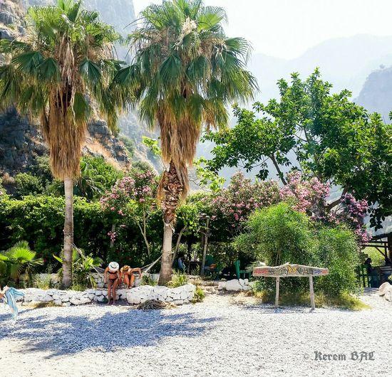 Magic place 👣 Butterflyvalley Kelebeklervadisi Turkey Paradise Mountains Turquia Beach Life Retirement Entrance Greecew