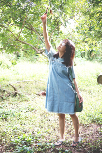 Teenage girl plucking tamarinds from tree while standing on field