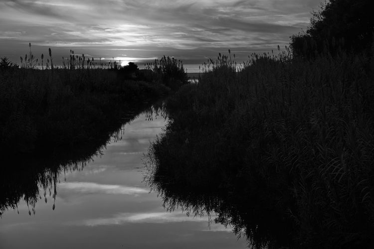 Water Reflection Nature Outdoors Scenics No People Tree Cloud - Sky Beach Beauty In Nature Sunset Water Reflections Canal Landscape Landscape_Collection Peace Blackandwhite Black And White Black & White